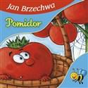 Pomidor  - Brzechwa Jan